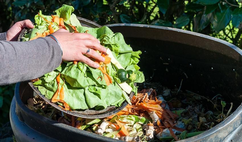 Утилизация органических отходов